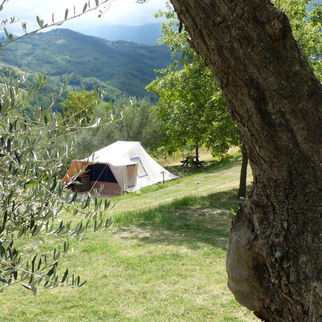 Ingerichte Tent