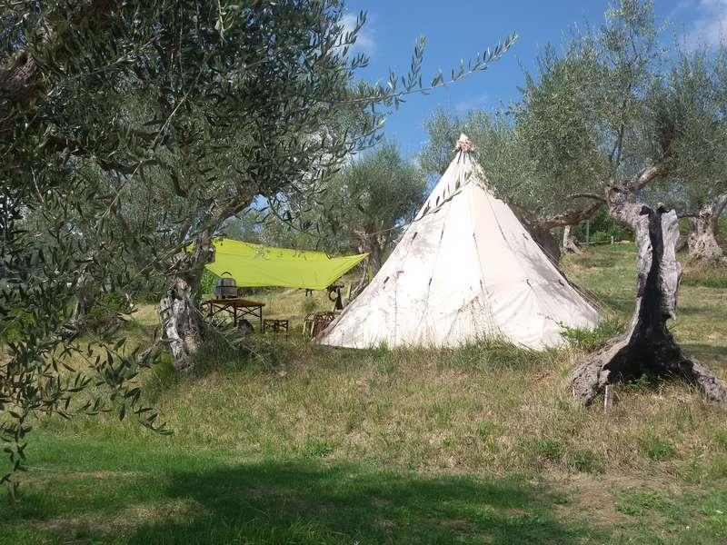 Tipi op bijzondere camping