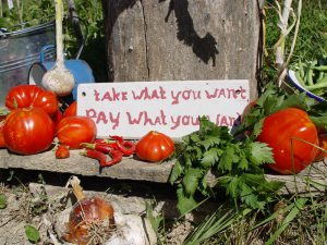 Camping moestuin ¨take what you want pay what you want¨.