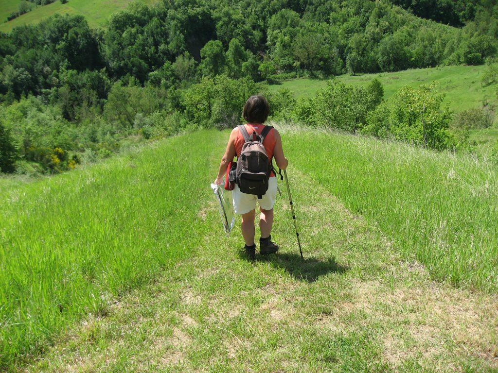 Stevige wandeling naar onze slowcamp (basic kamperen)