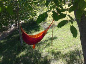 Relax nella natura