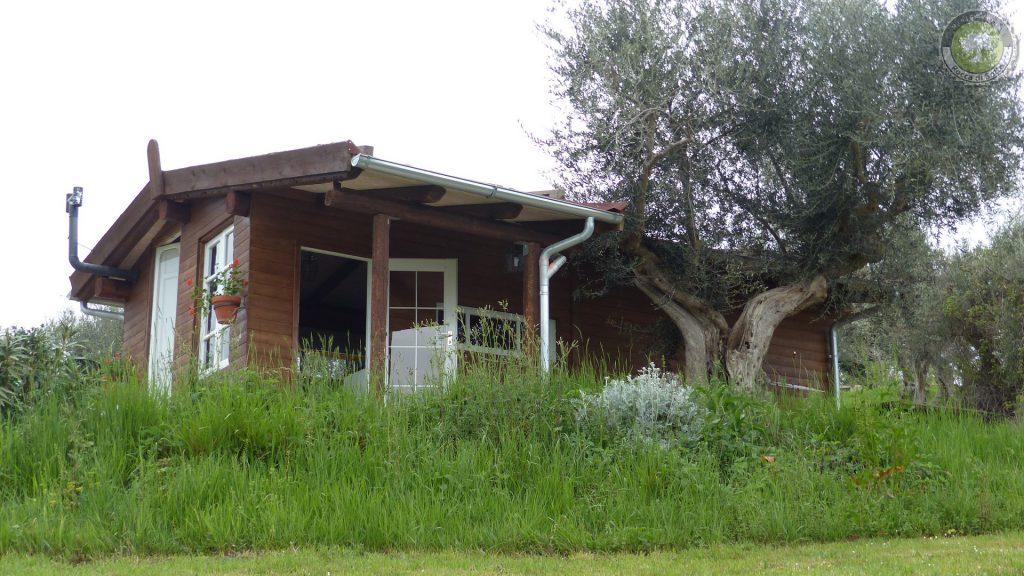 Natur-Erlebnis Blockhütte in Abruzzo